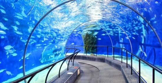 国内超长无缝海底隧道在益阳海洋城拼接完成