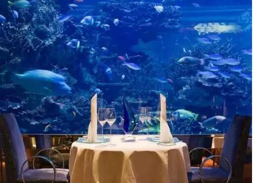 湖南省益阳市首创海底魔幻秀和海底大餐将火热上演