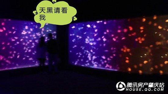【肇庆人福利到】肇庆首届海洋生物展登陆林隐,开启夏日环海之旅