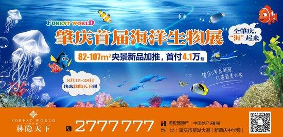 """首届海洋生物展登陆林隐天下——全肇庆,""""海""""起来"""