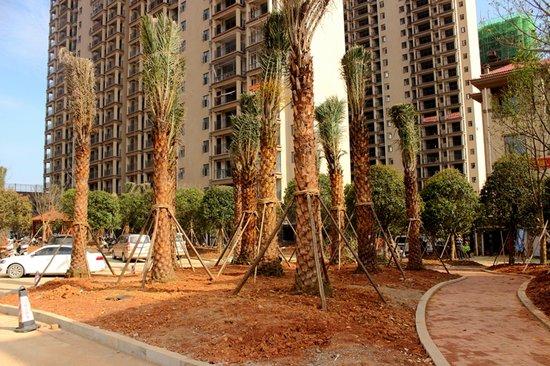 地中海城市花园:浯溪御园