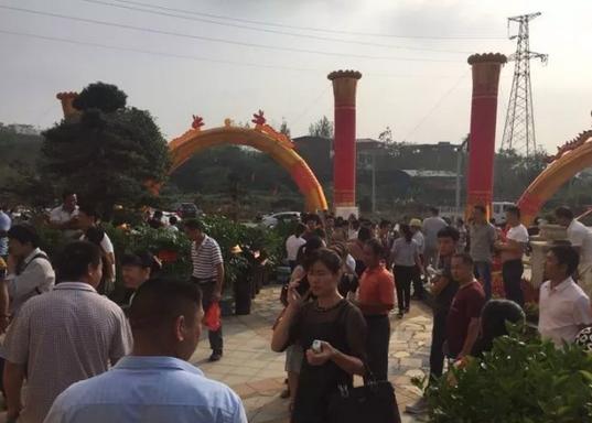 春江·帝景湾9月30日开盘火爆 热销超90%