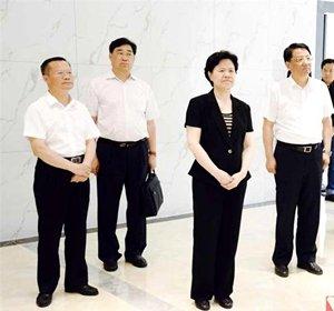 国家信访局局长舒晓琴率队到岳阳市调研