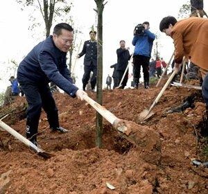 植树增绿正当时 打造生态岳阳城 胡忠雄刘和生等领导参加