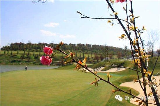 美丽风景——金湘湖,金江湖,金麟湖,高绿化亲水楼盘凸显魅力