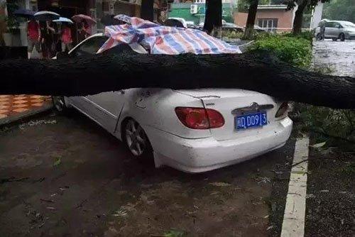 好房好车都有了,还得有个好车位!
