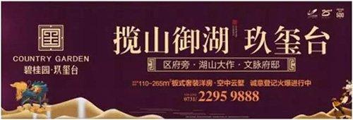 10万人共同鉴证碧桂园品牌盛典 湖山大作献礼株洲