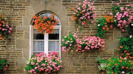 想有个花园,让日子再慢一点