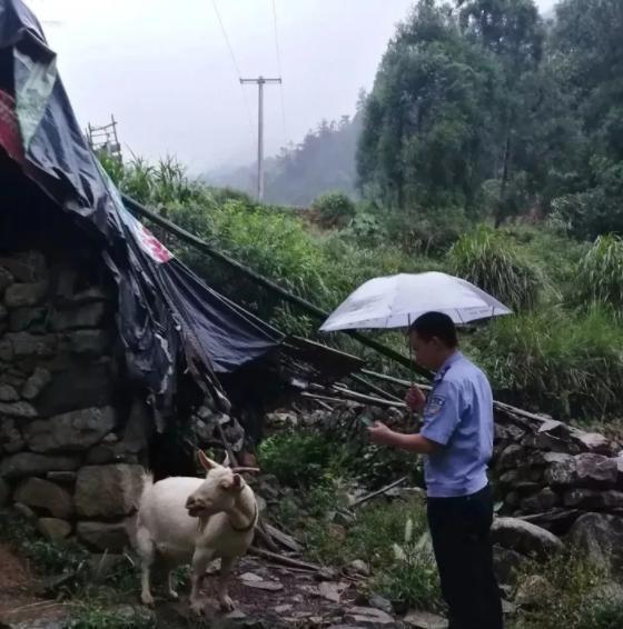 """村民""""仅有的家产""""丢了 民警帮忙找回丢失羔羊"""