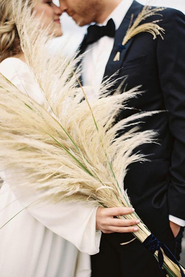 为何越来越多的婚礼喜欢用蒲苇来装饰?