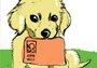 今日起杭州宠主可以网上申办养犬许可证