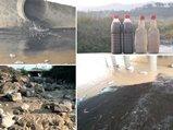 财智汇:丽水皮革工业的清白之路