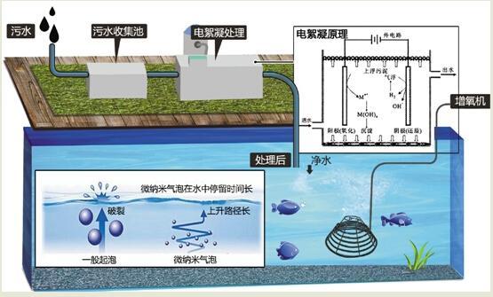 杭州城西三条河道设微纳米曝气机 自己会呼吸