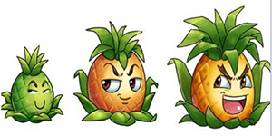 【新闻课107】菠萝凤梨,脑洞大开