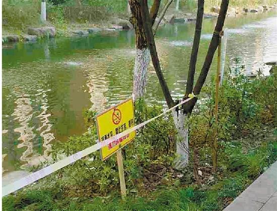 杭州一条河变成了露天洗车场 如今终于恢复宁静