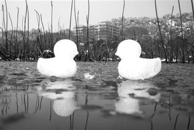 未来几天 杭城有冰冻或严重冰冻
