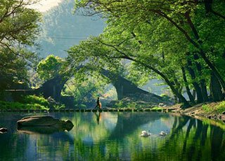 浙江这里藏一个秘境古村 小众又安静