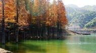 浙江绝美小城 囊括渔家风情