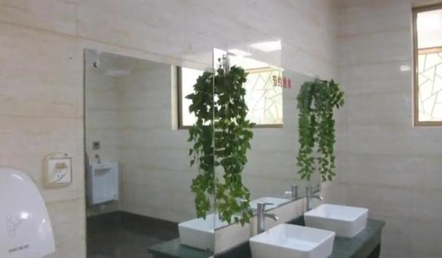 """公厕旧貌换新颜 """"厕所革命""""初显成效"""