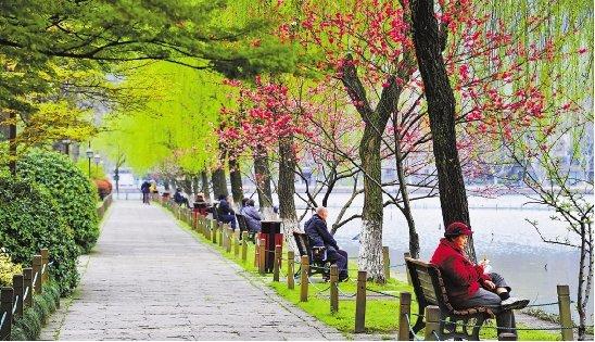 3月27日,杭州雨过天晴,西湖边桃红柳绿,春意融融. 来顺兴 摄