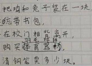 小学生写打油诗吐槽数学题