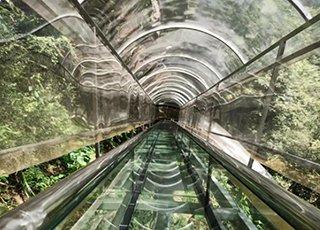 史上最疯狂的玻璃滑梯就在浙江
