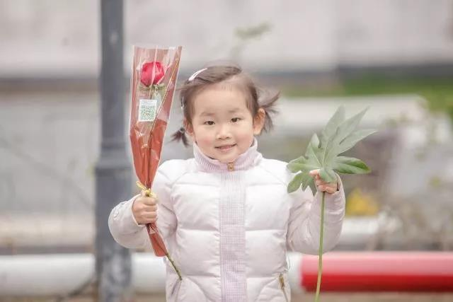 女神节派送心意 径山花海万朵玫瑰燃情全城