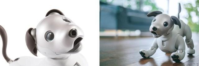 索尼大法Aibo机器狗回归:这次更有狗样