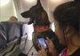 那些年坐飞机时遇到的特殊乘客们