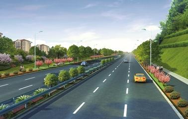 平阳新104国道规划图