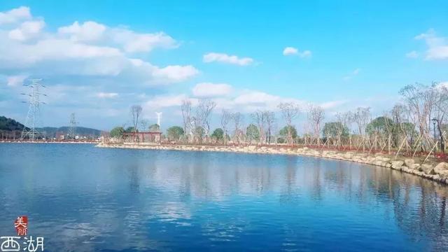 美丽西湖行动要实现9大目标 让美丽写满西湖大地