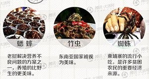 【新闻课49】人间美味昆虫食用手册