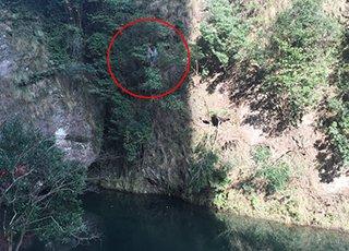 女游客被困雁荡山 爬悬崖找手机信号