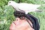 男子嘴对嘴给鸽子喂食 引游客围观