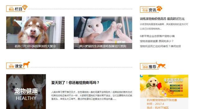 腾讯大浙网宠物频道上线了!