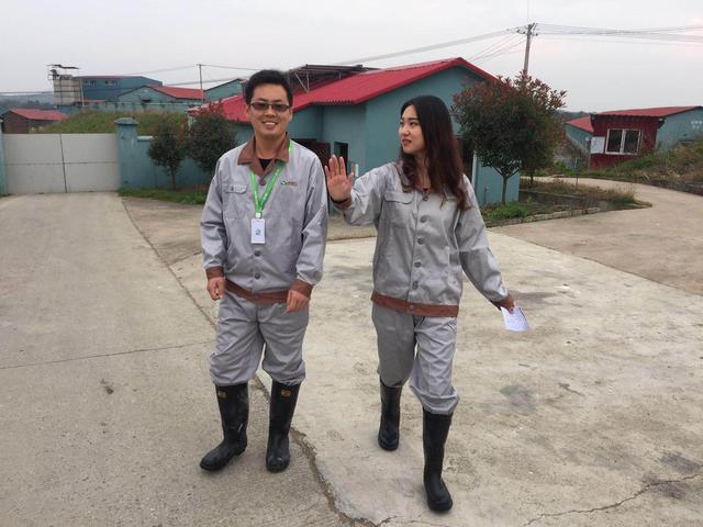 明康汇《寻味》走进南陵基地 揭生态土猪2千年黑历史