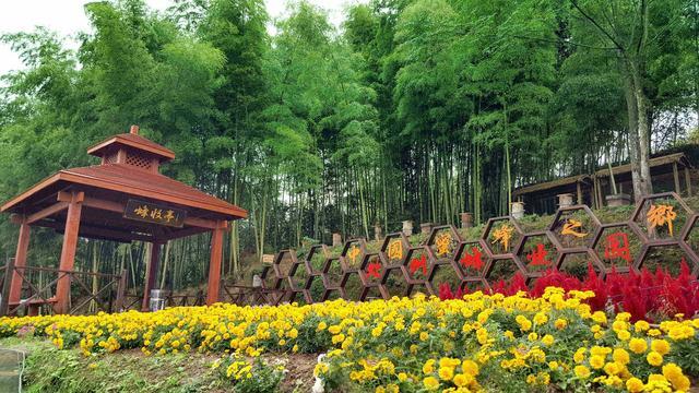 莲都区休闲农业和乡村旅游精品线路之风情东西线图片