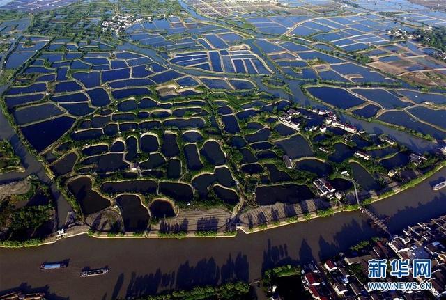 培育典型打造节庆湖州多措并举助农耕文化提档升级