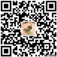VIPETA宠物健             康检测
