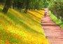 浙江最值得一去的8条春日骑行线路