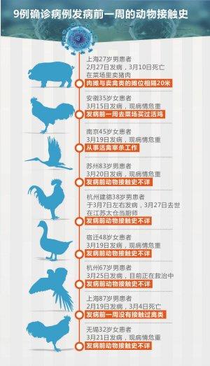 浙江发现2例禽流感 1人死亡另1人病情好转