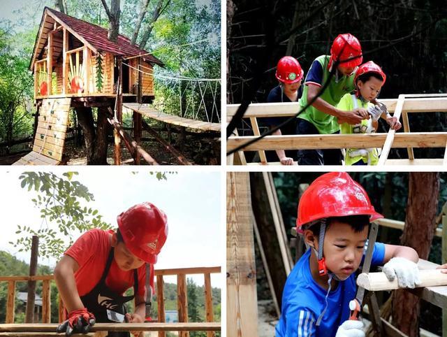 建木屋、学马术、真人CS 技能满分的森林小勇士来啦