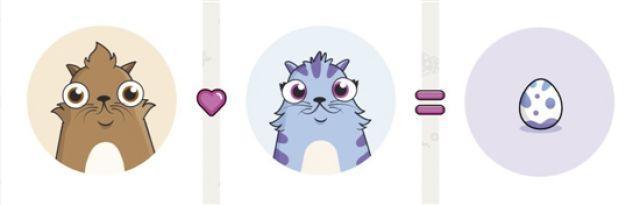没有最疯狂只有更疯狂:一只虚拟宠物猫叫价13亿元