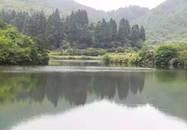 浙江有个江南秘境依山傍水 低调却美成了世外桃源