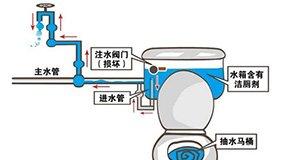 【新闻课111】马桶水倒流口感如何