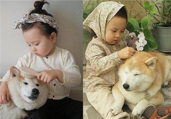 小萝莉和柴犬的日常 简直萌哭!