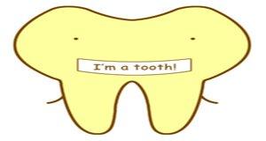 【新闻课141】巴氏刷牙法让牙齿更健康