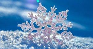 【新闻课153】南方人入冬前必学的雪知识