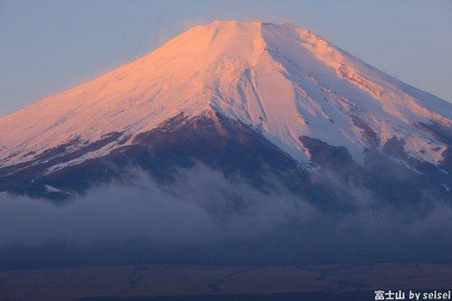 日本富士山下暗藏一片恐怖的死亡森林,每年近
