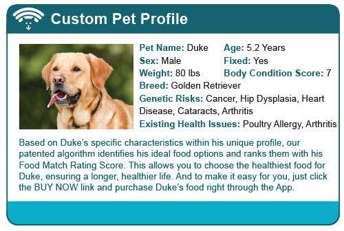 什么才是撸猫撸狗的正确姿势?前提是拥有一款智能宠物床